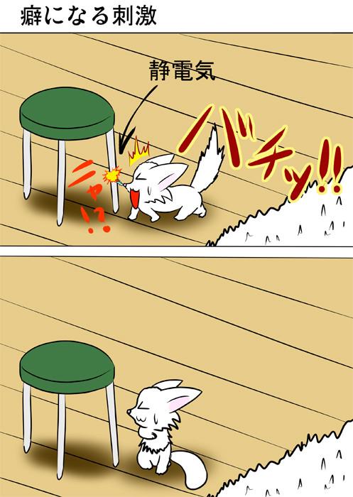 鼻先に静電気が走るマンチカン猫 ふわもふ猫の日常四コマweb漫画302話1p