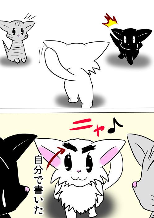 マジックで自分の眉毛をかいた白猫 ほのぼの・ふわもふ猫の日常四コマweb漫画362話2p