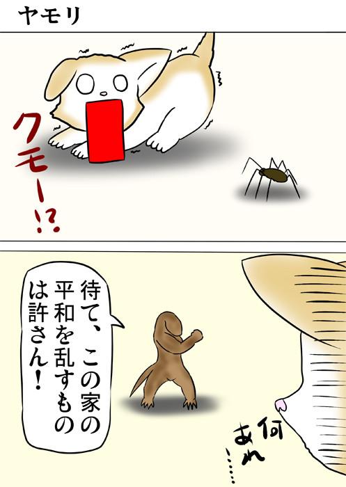クモを怖がる子猫の前に現れるヤモリ