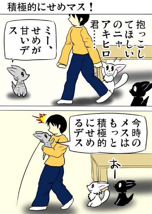 少年に飛びつくアメリカンショートヘア猫 ふわもふ猫の日常四コマweb漫画339話1p