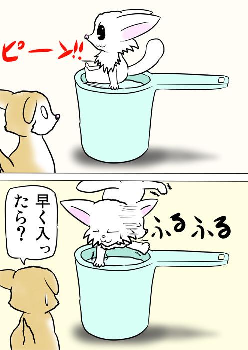 風呂桶の上でポーズをとる白猫