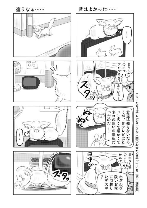 ねこねこ四コマweb漫画ミーのおもちゃ箱31p