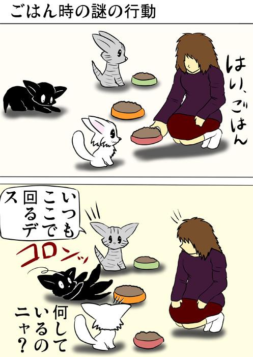 ごはんの前にでんぐり返りをする黒猫 ふわもふ猫の日常四コマweb漫画322話1p