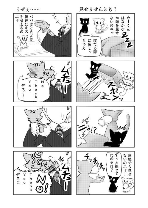 ねこねこ四コマweb漫画ミーのおもちゃ箱29p