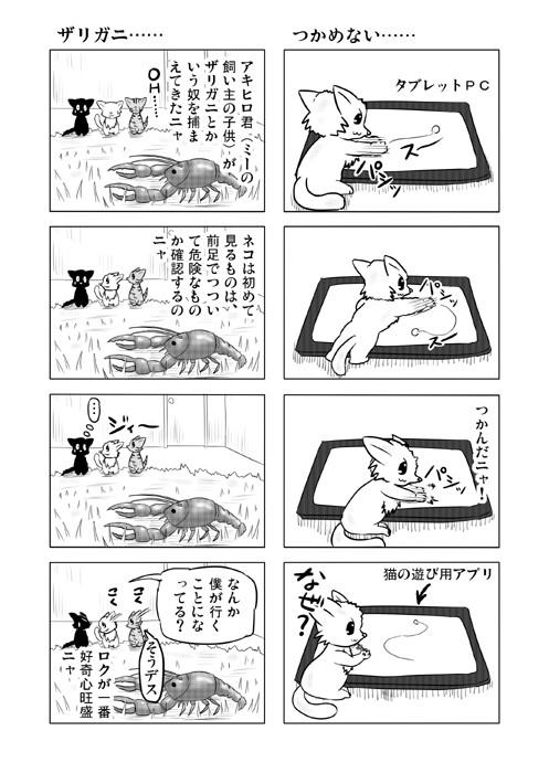 ねこねこ四コマweb漫画ミーのおもちゃ箱10p