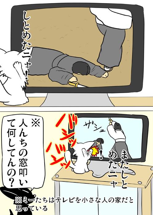 テレビを叩く白猫を見上げる黒猫 ほのぼの・ふわもふ猫の日常四コマweb漫画353話2p
