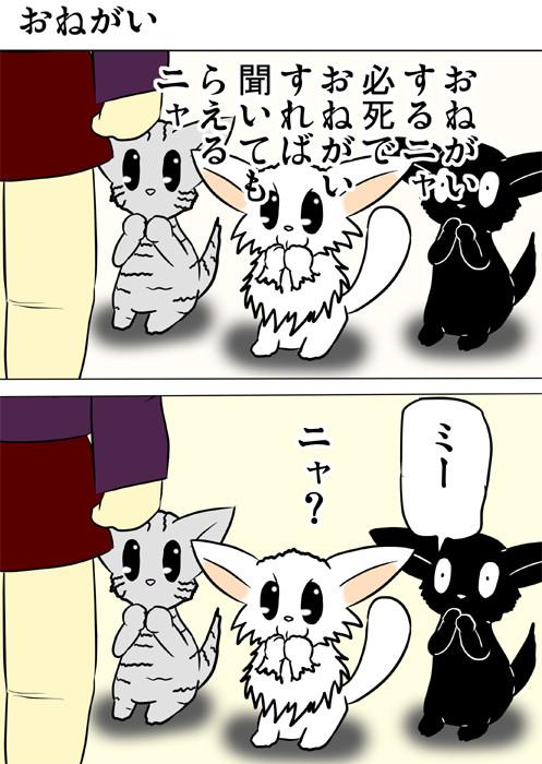 前足を合わせて飼い主にお願いする子猫たち ふわもふ猫の日常四コマweb漫画205話1p
