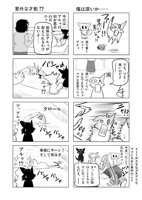 ねこねこ四コマweb漫画ミーのおもちゃ箱22p