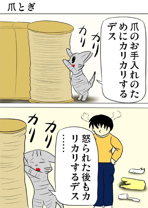 爪とぎで爪をとぐアメリカンショートヘア猫 ふわもふ猫の日常四コマweb漫画305話1p