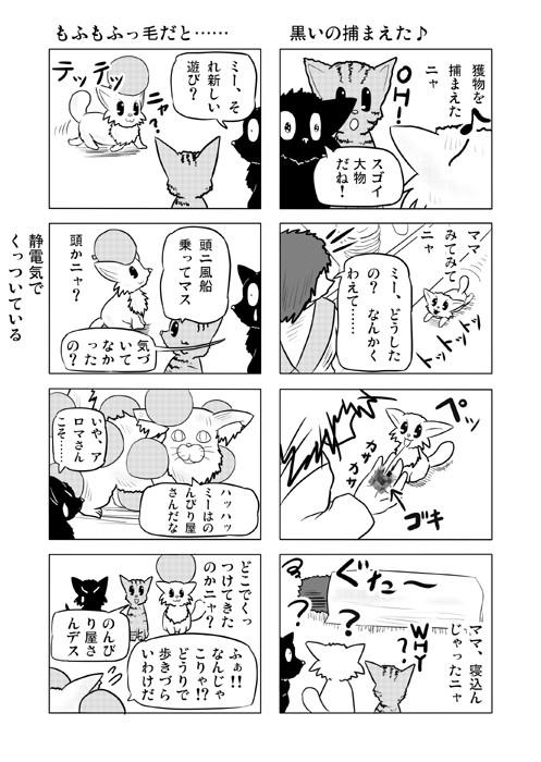ねこねこ四コマweb漫画ミーのおもちゃ箱18p