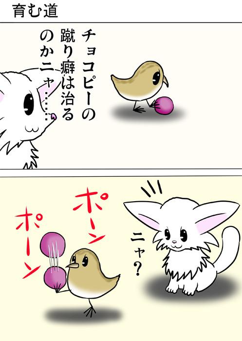 リフティングをはじめるうずらのヒナ ふわもふ猫の日常四コマweb漫画253話1p