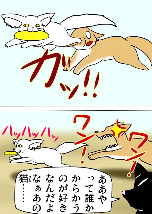 犬からフリスビーを横取りして遊ぶメインクーン ふわもふねこ四コマweb漫画ミーのおもちゃ箱173話2p