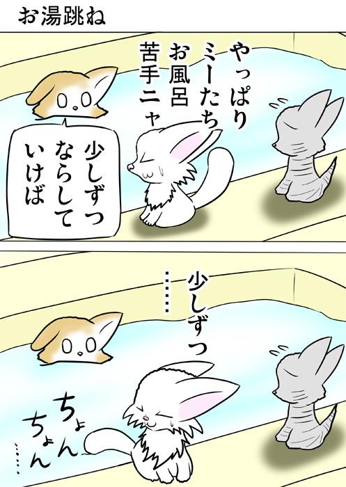 風呂になれるためしっぽの先を湯船につけるマンチカン猫 ふわもふ猫の日常四コマweb漫画284話1p