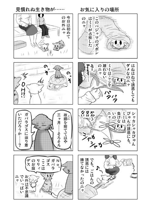 ねこねこ四コマweb漫画ミーのおもちゃ箱7p