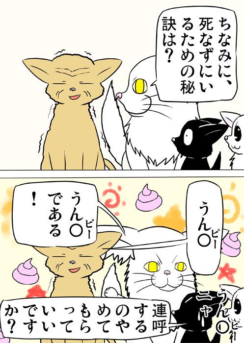 うん〇 ふわもふ猫の日常四コマweb漫画270話2p