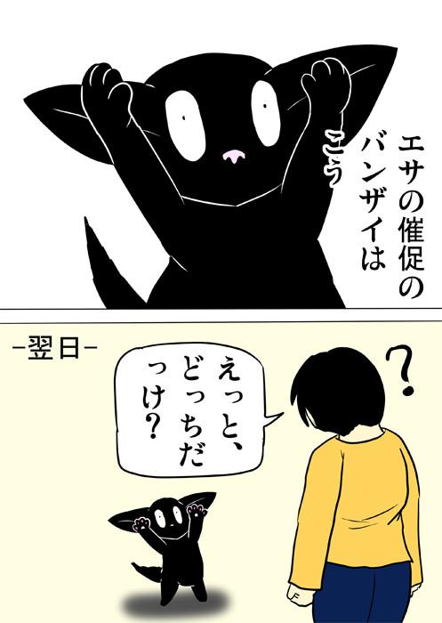 少年に向かって両前足を上げる黒猫 ほのぼの・ふわもふ猫の日常四コマweb漫画356話2p