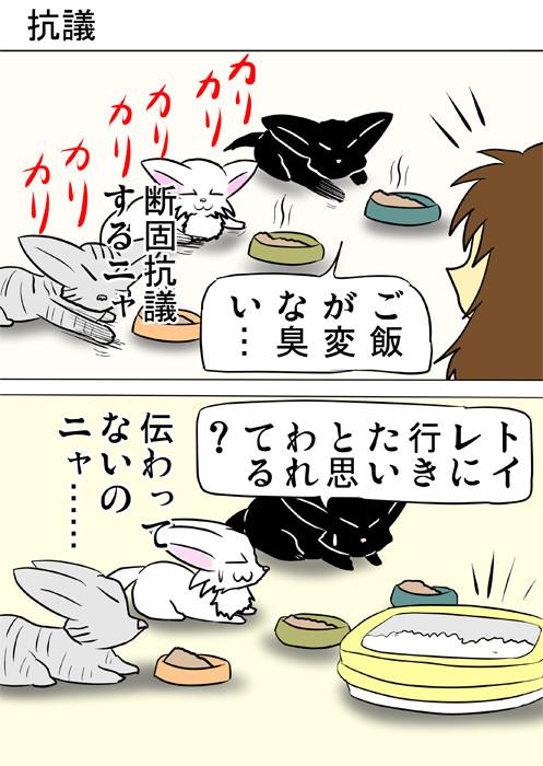 床をひっかきまわす子猫達 ふわもふ猫の日常四コマweb漫画350話1p