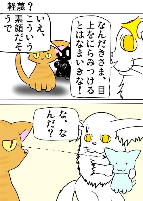 メインクーン猫のぬいぐるみをにらむ猫 ほのぼの・ふわもふ猫の日常四コマweb漫画361話1p