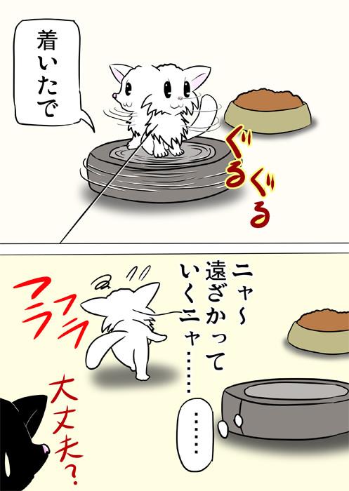 目が回ってフラフラのマンチカン猫 ふわもふ猫の日常四コマweb漫画266話2p