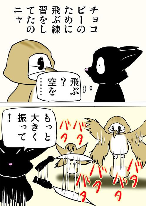 うずらのヒナに飛び方を教える黒猫 ふわもふ猫の日常四コマweb漫画274話2p