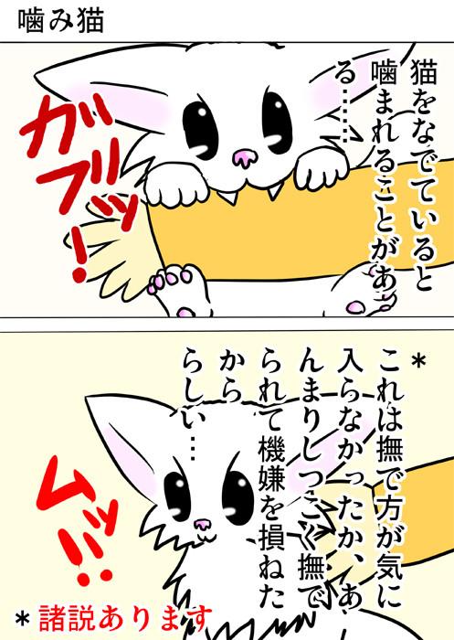人の腕に噛み付くマンチカン 撫でられてムッとするマンチカン ネコ四コマ漫画164話1p
