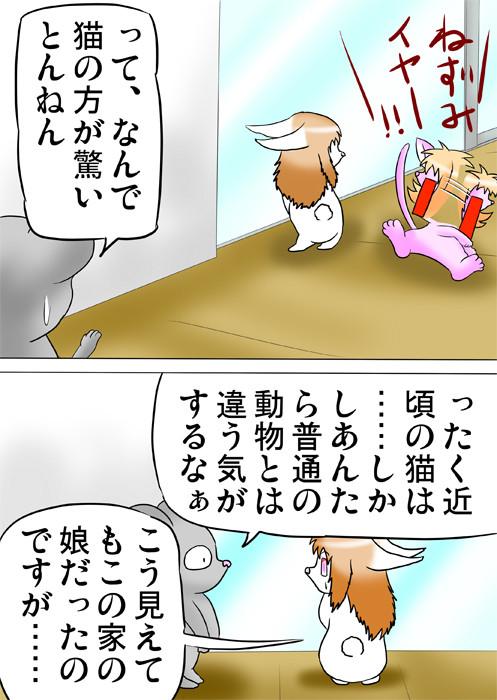首を振るピンク子猫