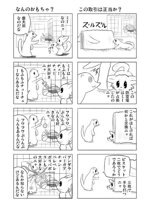ねこねこ四コマweb漫画ミーのおもちゃ箱36p