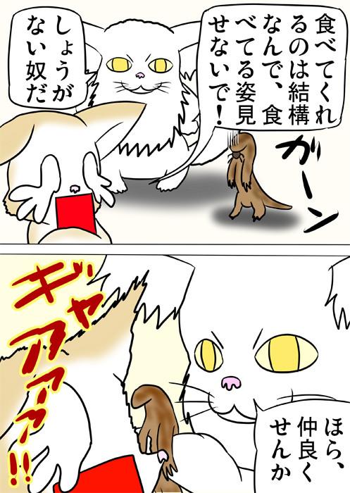 泣きわめく子猫にヤモリを突きつけるメインクーン猫