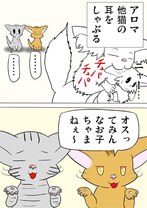 マンチカン猫の耳をしゃぶるメインクーン猫 あきれるメス猫たち ふわもふ猫の日常四コマweb漫画316話2p
