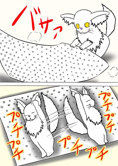 プチプチの上で転がるメインクーン猫 ふわもふ猫の日常四コマweb漫画301話2p
