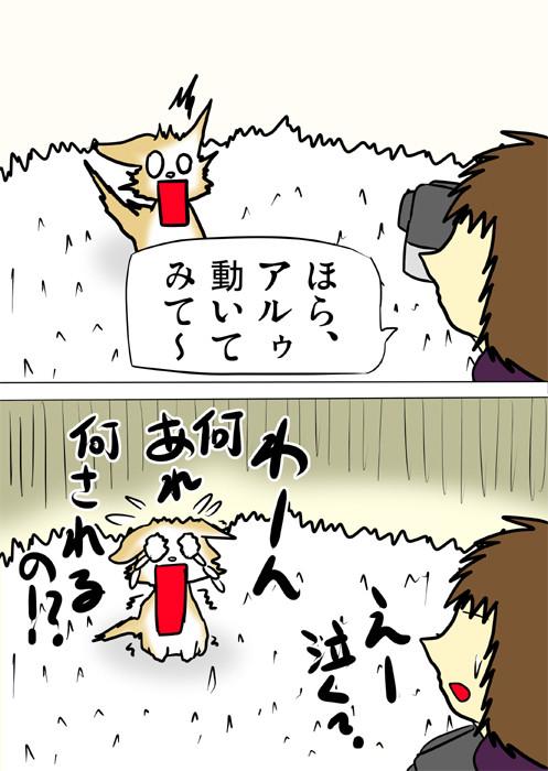 恐怖で泣き出すスコティッシュフォールド猫 四コマ漫画