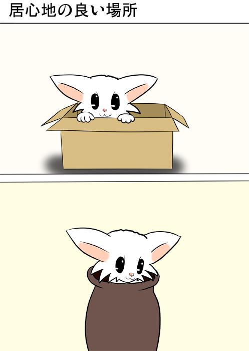 箱・壺に入るマンチカン猫 ふわもふ猫の日常四コマweb漫画251話1p