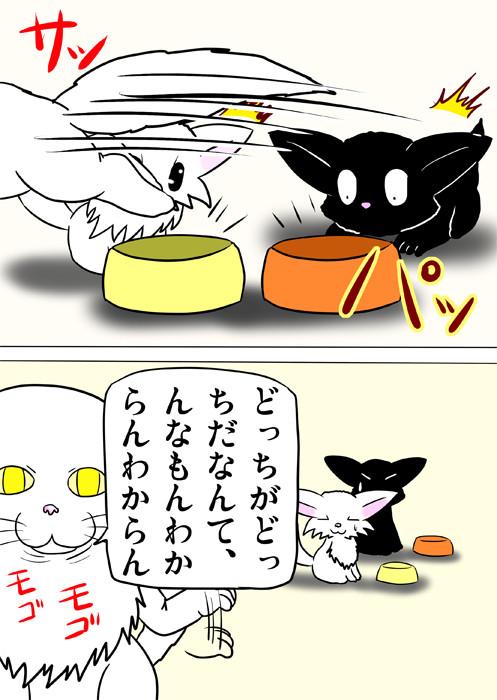 どっちの餌も食べてしまうメインクーン猫 ふわもふ猫の日常四コマweb漫画283話2p