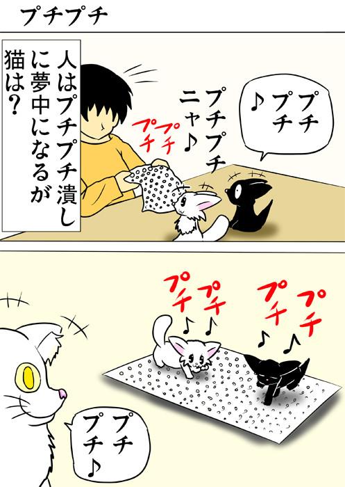 プチプチを踏んで遊ぶ子猫達 ふわもふ猫の日常四コマweb漫画301話1p