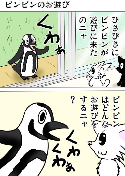 遊びに来たペンギンに質問するマンチカン 猫四コマ漫画162話1p