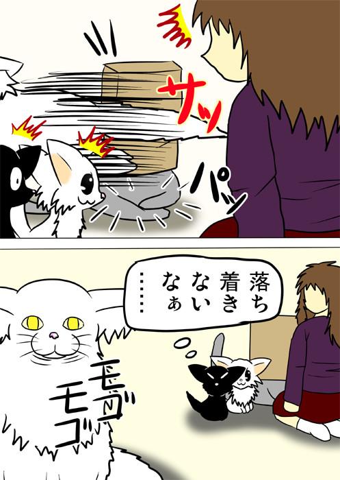 ネコカリカリを横取りするメインクーン猫 ふわもふ猫の日常四コマweb漫画213話2p