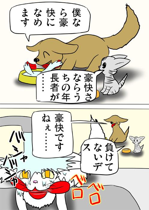 水道の水を頭からかぶり、嘗め回すメインクーン猫 ふわもふ猫の日常四コマweb漫画341話2p
