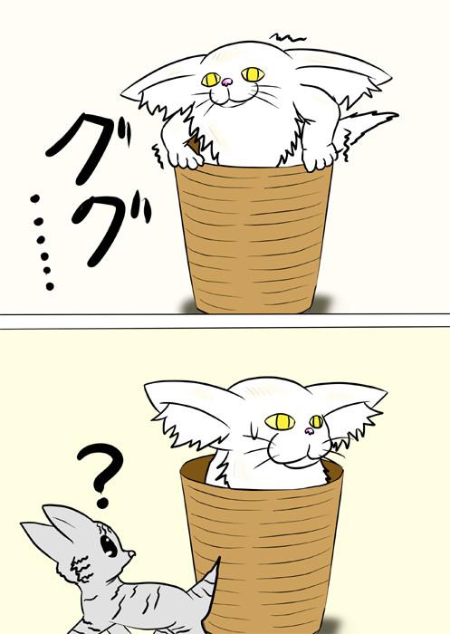 籠から抜けられないメインクーン猫 ふわもふ猫の日常四コマweb漫画211話2p
