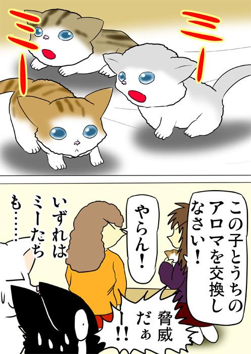 年寄猫と赤ちゃん猫の交換を要求する飼い主 ふわもふ猫の日常四コマweb漫画209話2p