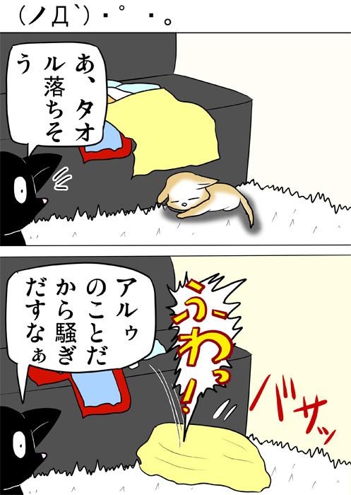 スコティッシュフォールド猫の上にソファーから落ちた黄色いタオルがかぶさる ふわもふ猫の日常四コマweb漫画257話1p