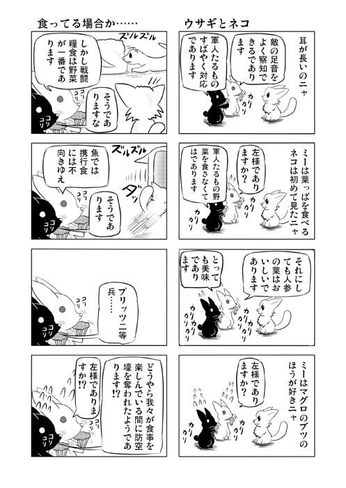 ねこねこ四コマweb漫画ミーのおもちゃ箱35p