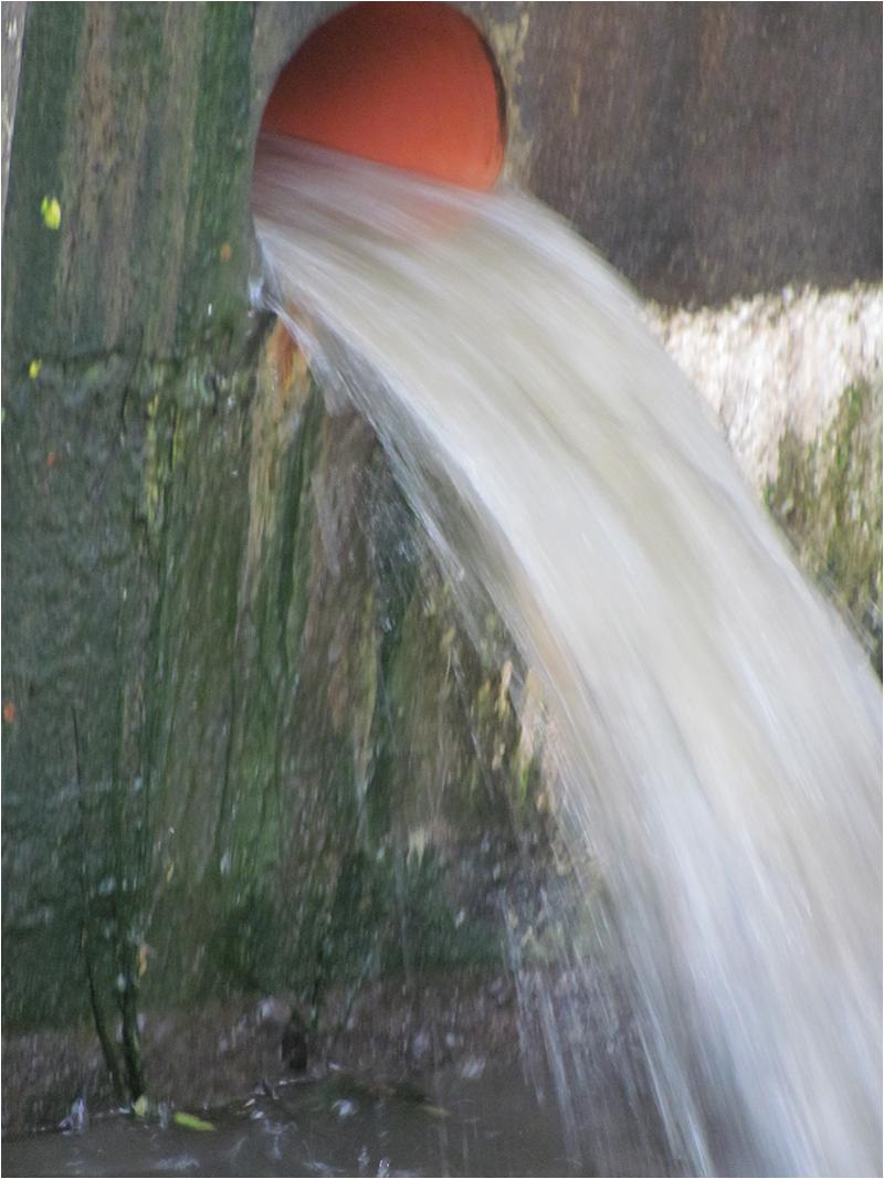 """2. Platz: Christa Haberl """"Wasser in Bewegung"""""""
