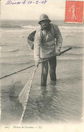 Pêcheur de crevettes - Collection BOSQUAIN