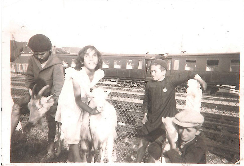 Les enfants D'Oliveira Collection D'Oliveira - Famille d'origine portugaise vers 1940