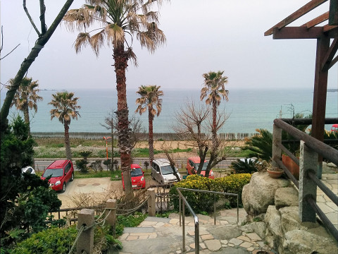 カフェ「カレント糸島」