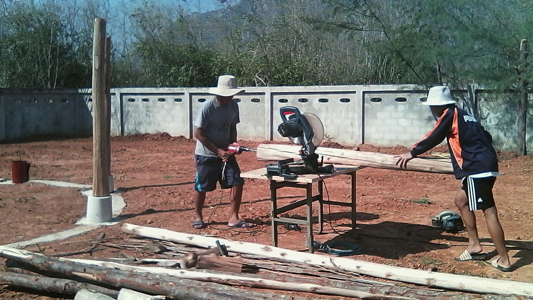 Anbohren des Holzstammes