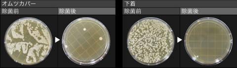 電解水による除菌効果説明