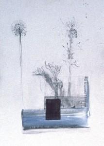 LILIE & PUSTEBLUME, Skizze-Mischtechnik auf Papier, 50 x 70 cm, 1997