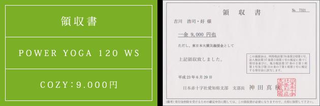 領収書|パワーヴィンヤサヨガ120 WS|2011.06.29|cozyより