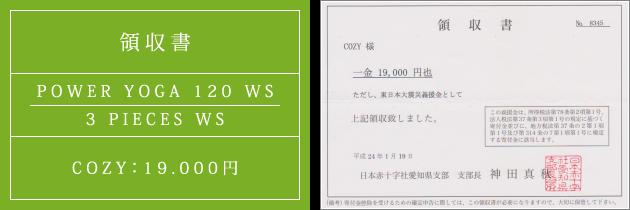 領収書|パワーヴィンヤサヨガ120 WS + 3 PIECES WS|2012.01.19|cozyより